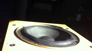 (subwoofer Excursion blowing up  (sunlight modestep