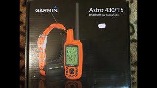 видео Ошейник с GPS для собак с навигатором для охоты, цены и отзывы