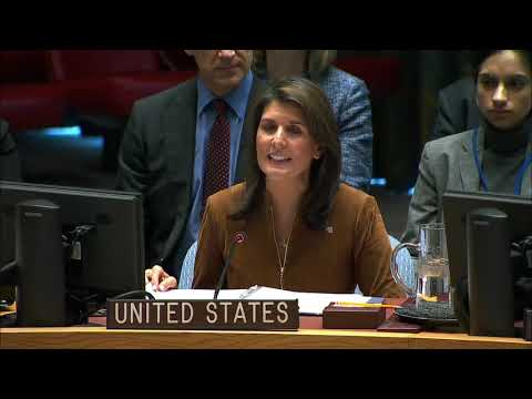 Remarks at a UN Security Council Open Debate on Multilateralism and the Role of the United Nations