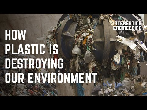 How plastic is destroying our environment and what to do about it