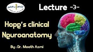 Neuroanatomy Anatomy Master ~ PNS - Lecture 3
