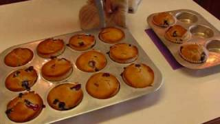 Betty's Morning Coffee Blueberry Muffins