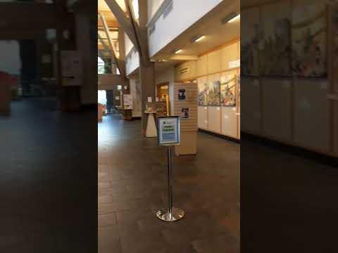 Sikh Art Exhibition, Saratoga Library CA till December 30.