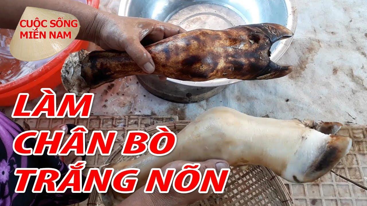 Cách Làm Chân Bò Hầm Sả Ngon | Nam Việt 678 – Du Lịch Miền Tây