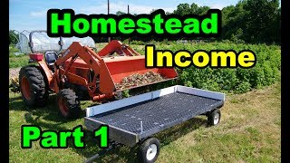 How to INCREASE Your Homesteading Income from Planting and  Harvesting Garlic. Part 1