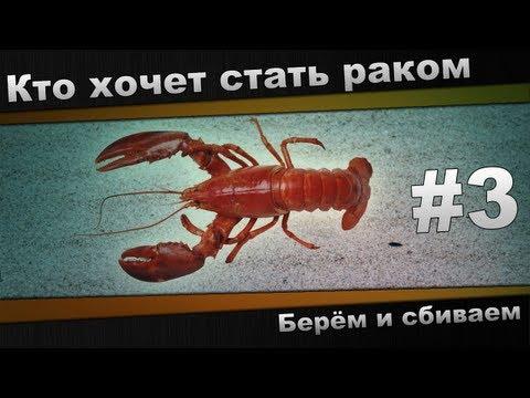 Ва Банк Музыка - specificationvn