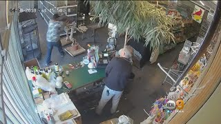 Owner Of Pet Shop Fights Off Bigger And Younger Man Trying To Steal A Bird