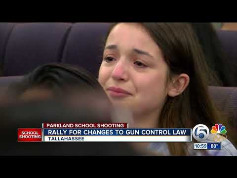 Students rally in Tallahassee seeking gun law changes