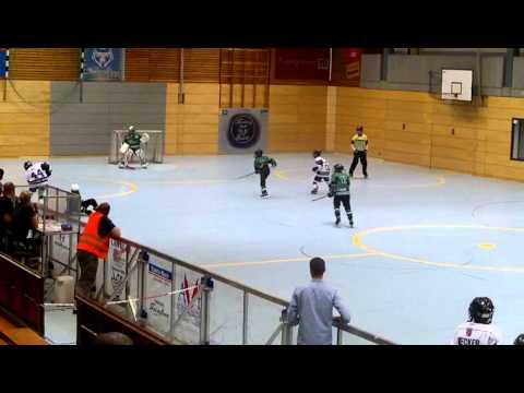 Skating Bears Langenfeld 3