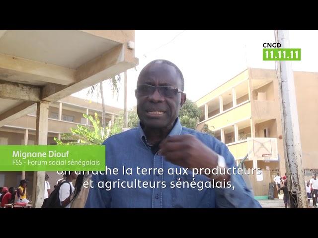 Sénégal : « S'il n'y a pas d'arbre, il n'y pas de vie »
