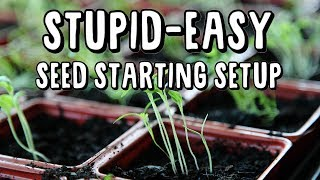 start-a-buttload-of-veggies-inside-for-your-small-garden