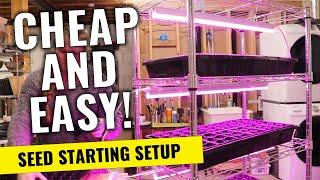 STUPID-EASY Setup to Start Your Seedlings Indoors