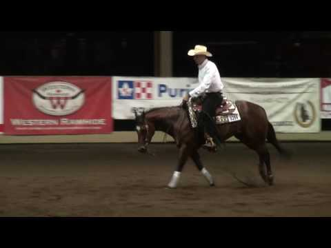 Moonstone Princess AQR Open Futurity Champion (Level 1/2)