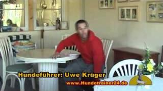 """Polizeihund - Riesenschnauzer """"arthus Vom Windpark"""""""