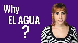Ask a Spanish Teacher with Rosa - Why EL ALGUA?