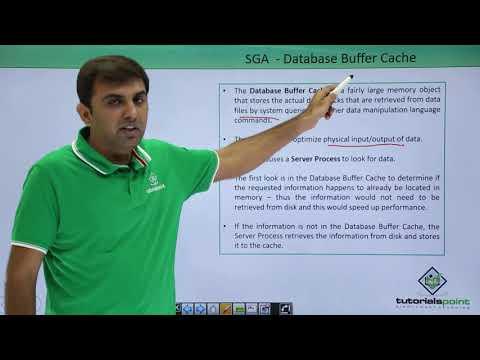 Oracle DB - SGA Components