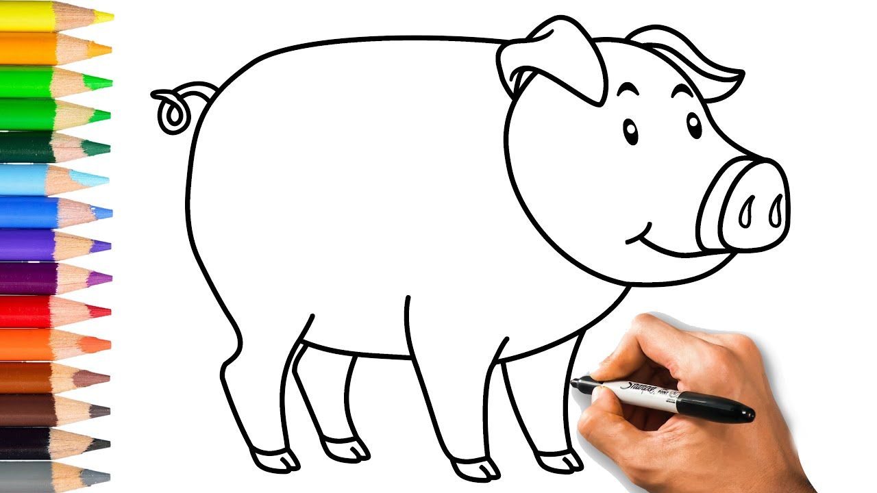 How to draw a pig very easy learn drawing step by step with draw easy