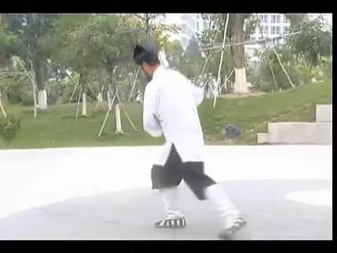 18 форм Лун Мэнь тайцзи цюань взращивающих-питающих здоровье полная форма