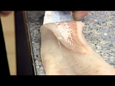 How to Skin an Atlantic Cod | 407