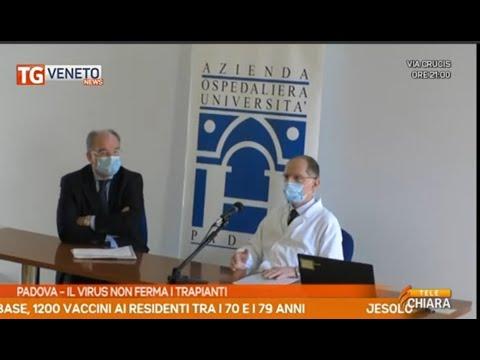 Telechiara - Padova,