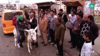 ترخيص الحمير في فلسطين