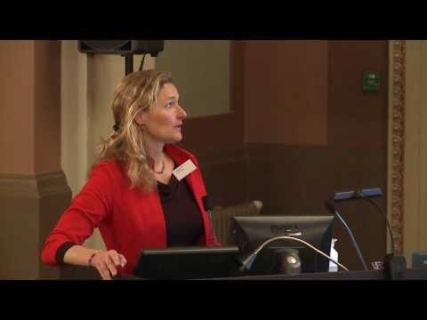 Tineke Lambooy, Cross-jurisdictional Analysis of Group Law:...