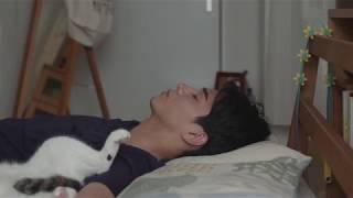 第32回野間文芸新人賞に輝いた柴崎友香の小説を映画化したラブストーリ...