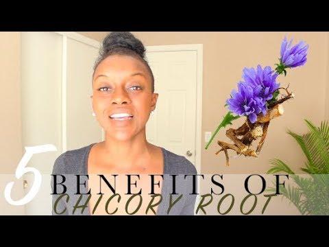 5 Benefits of Chicory Root| Coffee Alternative