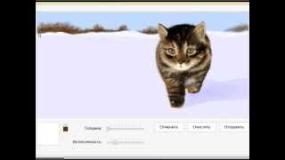 Как красиво нарисовать кота))