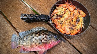 Catch n' Cook Tilapia and SPICY Shrimp!