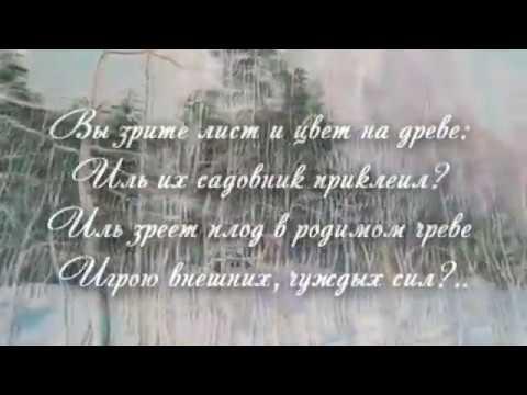 Изображение предпросмотра прочтения – «A linea» читают произведение «Нето, что мните вы, природа…» Ф.И.Тютчева