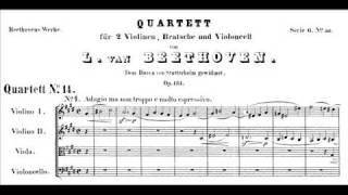 Beethoven - String Quartet op. 131 - Last 2 movements