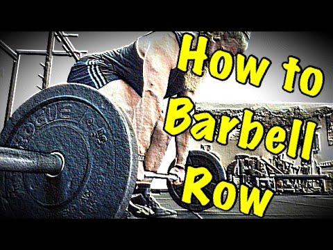 Barbell Row vs Dumbbell Row - Which Is Best for Strength