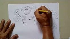 How draw a california poppy free music download how to draw a poppy flower easy drawing tutorials mightylinksfo