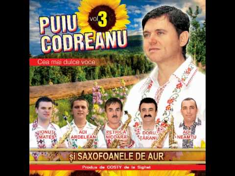 Puiu Codreanu - Mai nevastă, mai muiere - album 2012