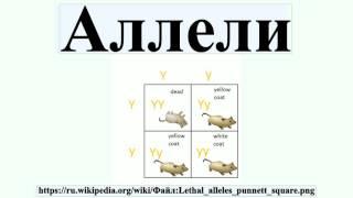 видео Аллели | Биология