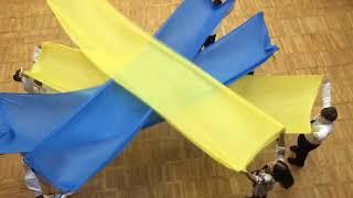 День Соборності в спеціалізованій школі #307 міста Києва