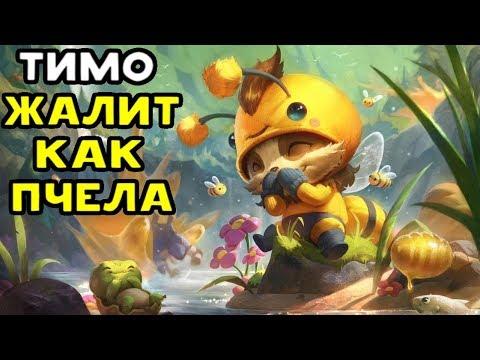 видео: ТИМО ЖУЖЖИМО ЖАЛИТ КАК ПЧЕЛА - league of legends