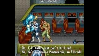 The Punisher 2 player Netplay arcade game