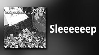 Escape From The Zoo // Sleeeeeep