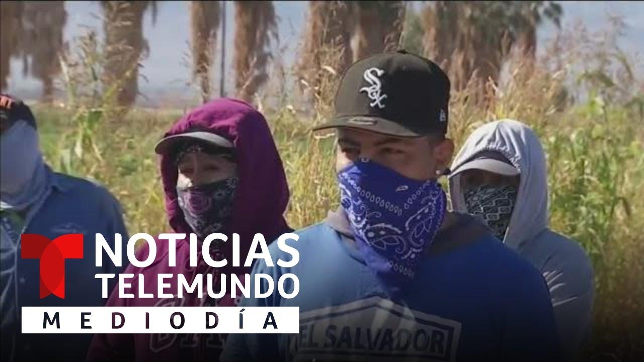 Inician campaña para crear confianza sobre vacuna de COVID-19   Noticias Telemundo