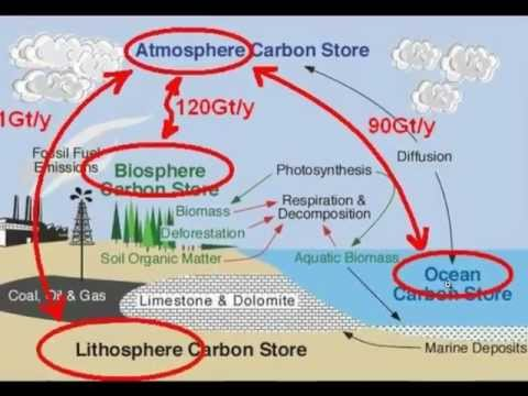 Gw021 the carbon cycle and the biosphere youtube gw021 the carbon cycle and the biosphere ccuart Choice Image