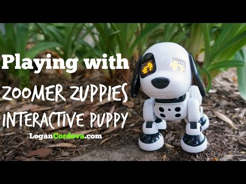 Zoomer Zuppies Review The Interactive Puppy Spot Youtube