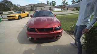 Driving Mustang Lifestyle's Cobra