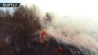 В Нижегородской области тушат более 300 природных пожаров — кадры с беспилотника