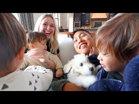 Did We Get A New Puppy?!
