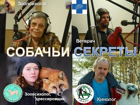 Кинология, зоопсихология, ветеринария, биология о проблемах собак
