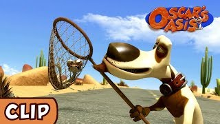 Oscar's Oasis - Hunting Dog | HQ | Funny Cartoons