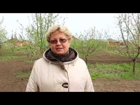 Продажа дома в Белгородской области,п. Дальняя Игуменка