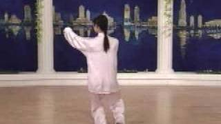 tai chi 24 forms part 6 a